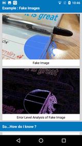 Fake Image Detector (16)