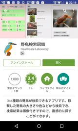 野鳥検索図鑑 (1)