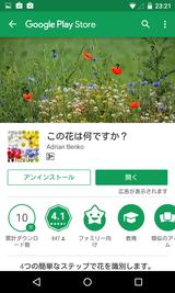 この花は何ですか? (1)