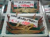 日本海の蟹を見ました。