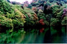 十二湖青池�