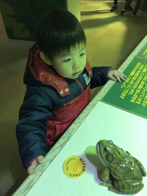 地味やと思ったけど、意外と楽しかった水族館! ①