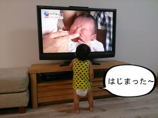 赤ちゃんは赤ちゃんが好き?? 「かんさい情報ネット ten」の『めばえ』が大好き!