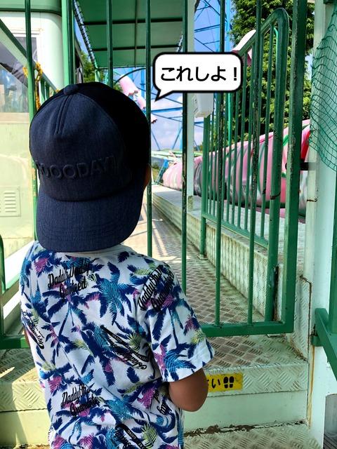 IMG_0070 (1)
