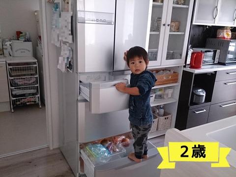成長のモノサシは、冷蔵庫!
