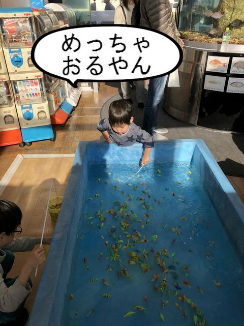 めっちゃ楽しい! 魚釣りゲーム!