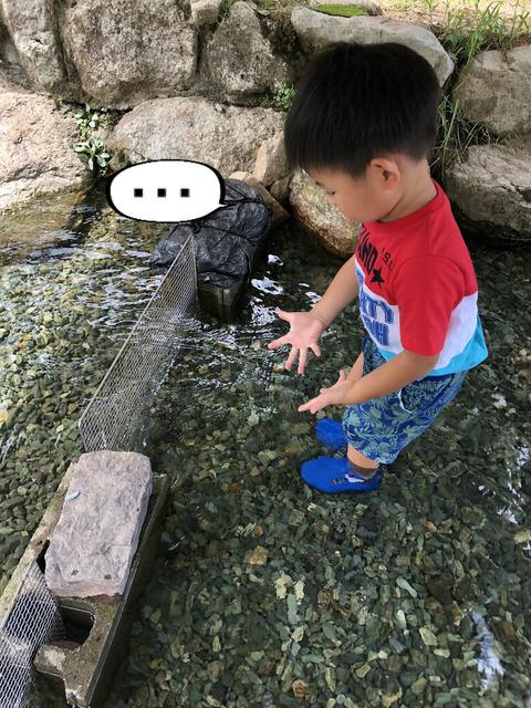 魚のつかみ取り初体験! ヨーデルの森へ!