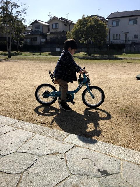 自転車もだいぶ上手になってきた!