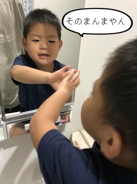 3歳児の言葉。 自力で推理するだけでは、限界になってきた!