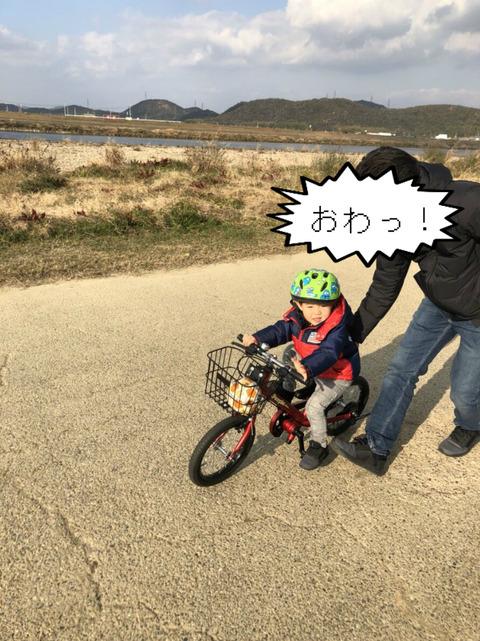 一向に乗れる気配がない、自転車!