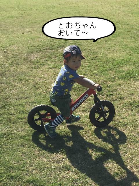そろそろ自転車の練習もできるかな~