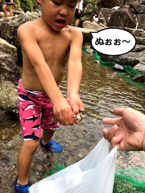 魚のつかみ取りと川遊び! ②