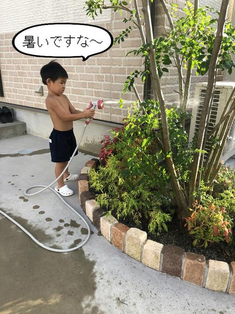 庭の水やりは遊びの一環。