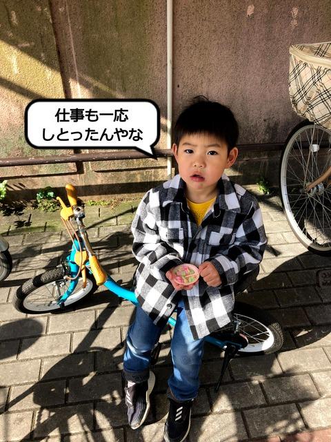 IMG_8095 (1)