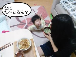 離乳食だけではものたりひん!