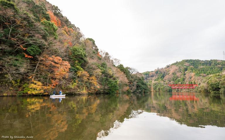 君津市亀山湖の紅葉クルーズ20161211-3