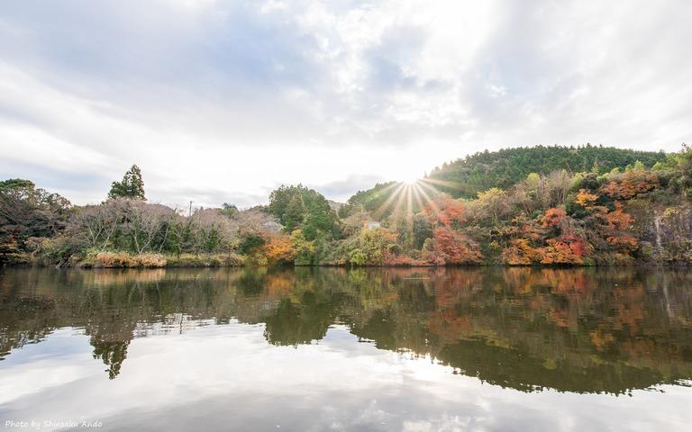 君津市亀山湖の紅葉クルーズ20161211-14