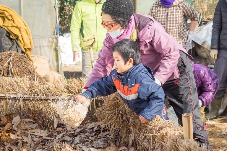 山田農場|踏み込み温床作り-5