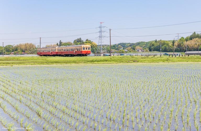 小湊鉄道2016年5月5日-14(上総三又駅)