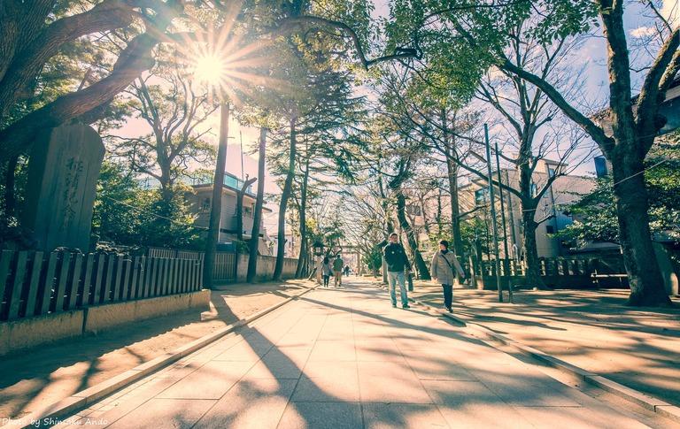 船橋大神宮へ初詣2017-1