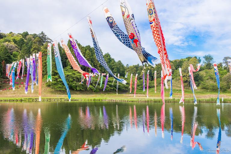 千葉県香取市|いきいき山田・鯉のぼりまつり-1