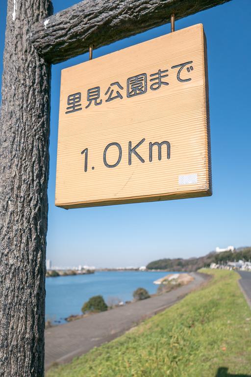 江戸川の河川敷-2
