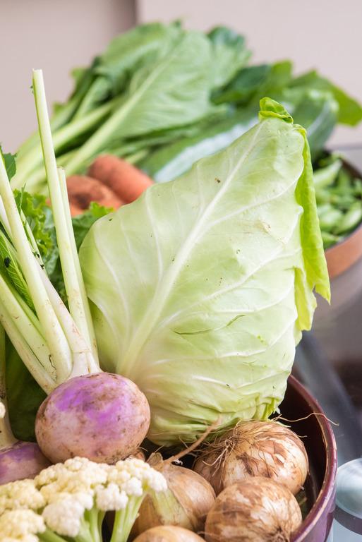 山田農場の野菜セット_3