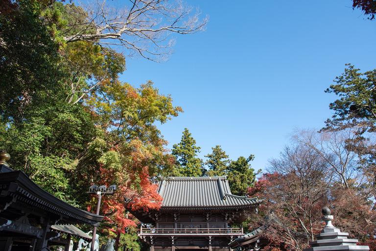 高尾山紅葉ハイキング2020_6