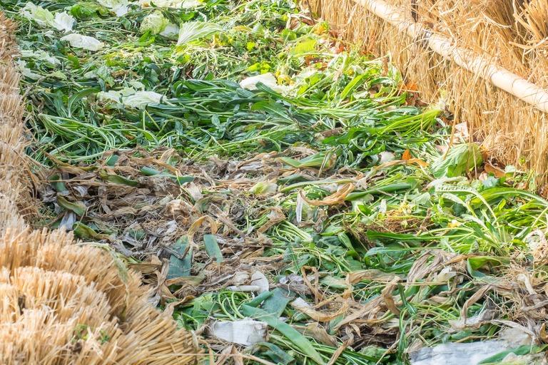 山田農場|踏み込み温床作り-7