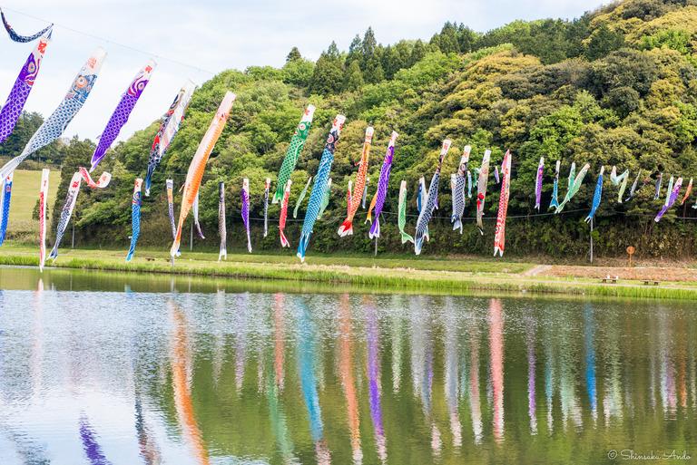 千葉県香取市|いきいき山田・鯉のぼりまつり-8