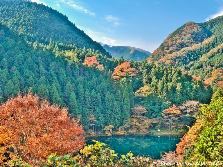 奥多摩の紅葉2015 白丸湖(name)