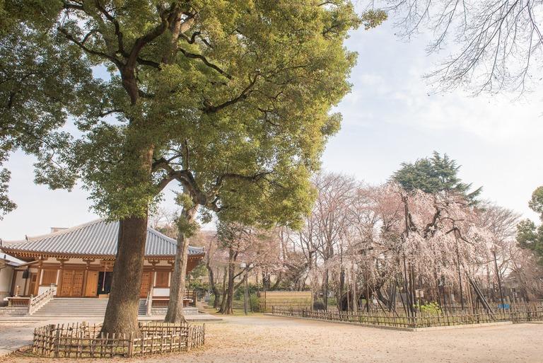 弘法寺に到着