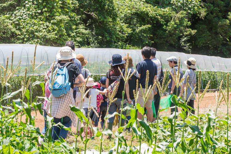 山田農場 餃子-9