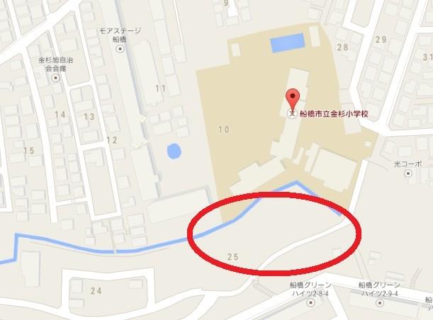 金杉小学校・ヒマワリ畑の地図