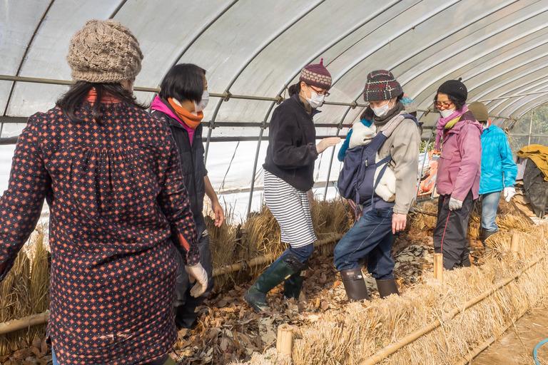 山田農場|踏み込み温床作り-9