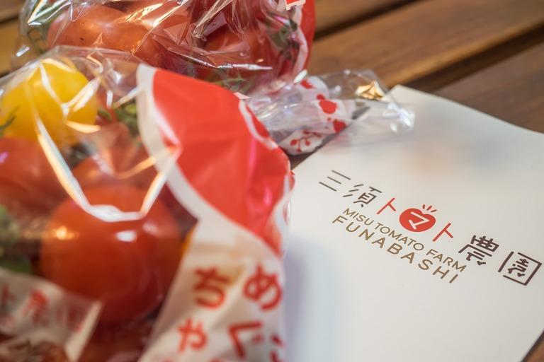 船橋市・三須トマト農園のトマト-3