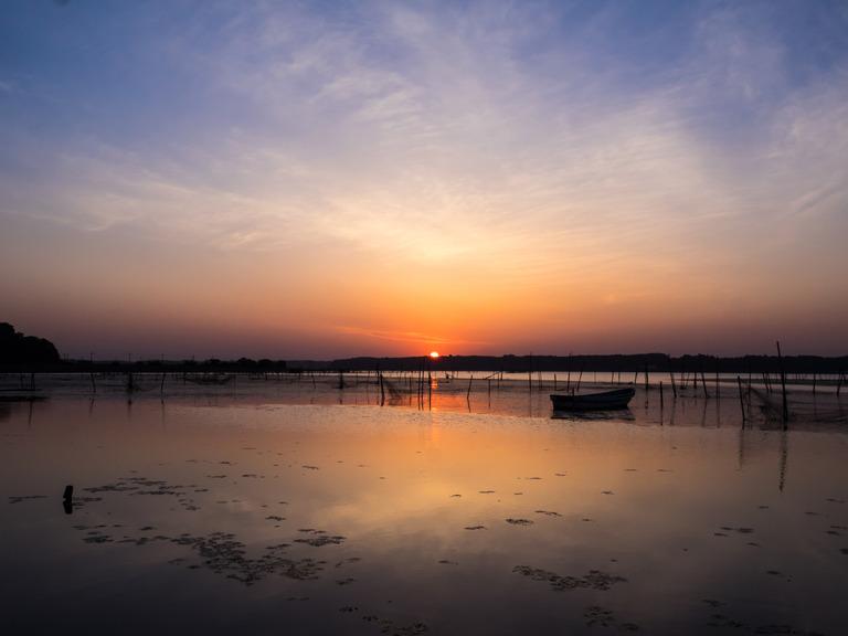印旛沼の日の出20150514-1