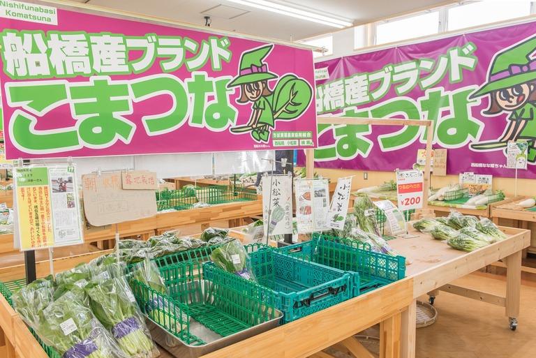 DSC_3515西船橋・小松菜まつり2016-6