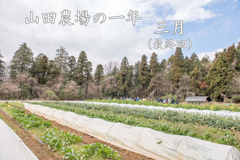 山田農場の一年・3月‐1(タイトル)