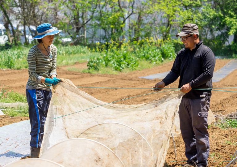 山田農場の4月‐8
