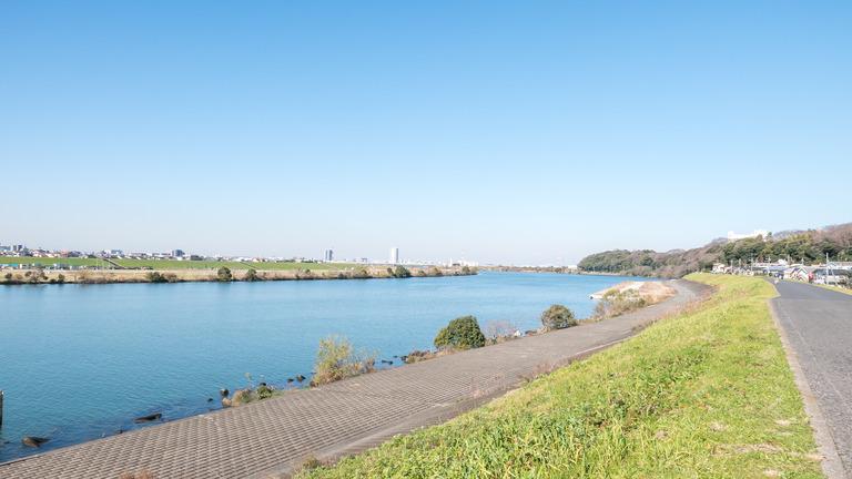 江戸川の河川敷-1