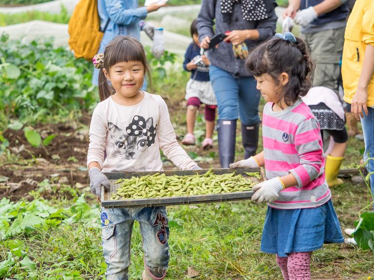 山田農場の一年・十月(枝豆の会)16