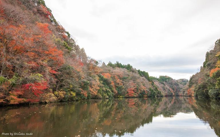 君津市亀山湖の紅葉クルーズ20161211-5