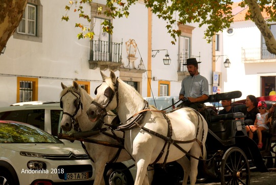 ポルトガル旅行 ブログ (2)