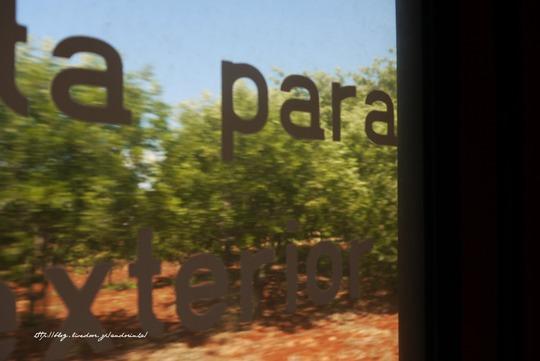 ポルトガル アルガルヴェ ブログ (3)
