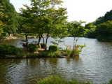 大池こども自然公園