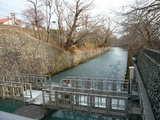 羽村取水堰付近