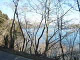 湖畔の県道