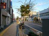朝の一関市市街地
