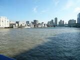 清洲橋から隅田川を眺めて